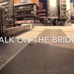 戎橋 Cross the Bridge 〜橋を渡る〜 005